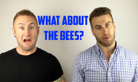 what-about-the-bees-for-youtube2